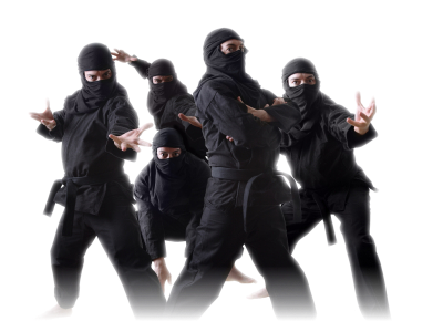 Musha_Shugyo_ninja_group